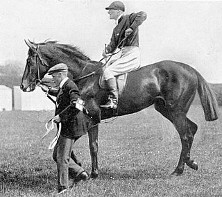 Our Lassie British-bred Thoroughbred racehorse