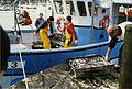 Pêche à la seiche (1).jpg