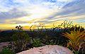 Pôr do Sol entre vegetações II, Morro do pai Inácio.JPG
