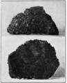 PSM V81 D322 Prehistoric rubber from sasco arizona.png