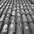 Pannendak, bestaande uit holle en bolle dakpannen, tijdens restauratiewerkzaamheden - Bornwird - 20329558 - RCE.jpg