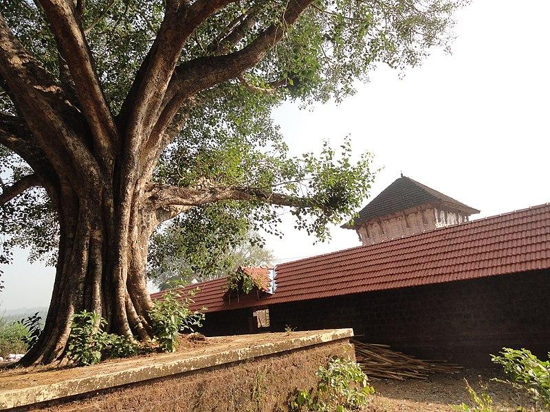 File:Panniyur Varahamoorthy Temple1.JPG