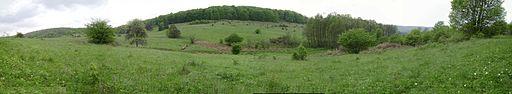 Panorama 1 (Drienčanský kras)