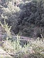Parc de Vallvidrera 175-7564 IMG.JPG