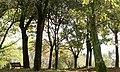 Parchetto - panoramio.jpg