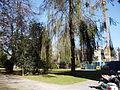 Park der Villa Thurn und Taxis, Bregenz Vbg mit Erweiterungsbau des Gymnasiums.jpg