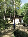 Paro Taktsang, Taktsang Palphug Monastery, Tiger's Nest -views from the trekking path- during LGFC - Bhutan 2019 (318).jpg