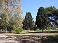 Parque Municipal de Lomas de Zamora.jpg