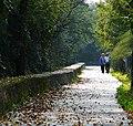 Passeggiate d'autunno - panoramio (1).jpg