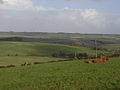 Pastures above Aldbourne - geograph.org.uk - 265775.jpg