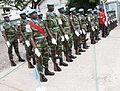 Peacekeepers at the UN Day 2011-10-24- in Kinshasa Photo MONUSCO Myriam Asmani (6311961646).jpg