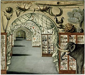 Ashton Lever - Perspective interior view of Sir Ashton Lever's Museum in Leicester Square, London 30 March 1785