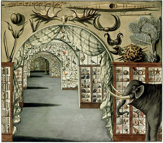 https://upload.wikimedia.org/wikipedia/commons/thumb/1/15/Perspective_interior_view_of_Sir_Ashton_Lever%27s_Museum_in_Leicester_Square%2C_London_March_30_1785._Watercolour_by_Sarah_Stone.jpg/547px-Perspective_interior_view_of_Sir_Ashton_Lever%27s_Museum_in_Leicester_Square%2C_London_March_30_1785._Watercolour_by_Sarah_Stone.jpg