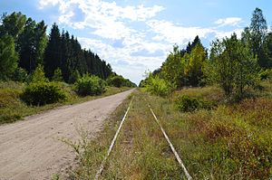 Saint Petersburg – Warsaw Railway - Now abandoned line between Marcinkonys and Porechye in Lithuania