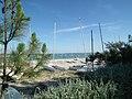 Petite plage de Saint-Trojan.JPG