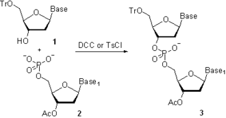Oligonucleotide synthesis - Scheme. 3 Oligonucleotide coupling by phosphodiester method; Tr = -CPh3