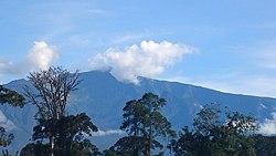 Pico Basilé.jpg