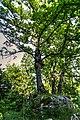 Piechowice, Poland - panoramio (8).jpg