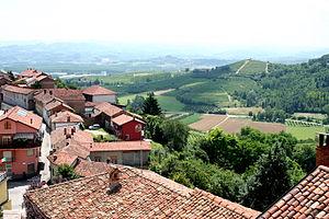 In the Italian wine region of Piedmont