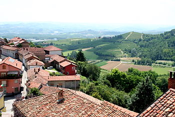 In the Italian wine region of Piedmont