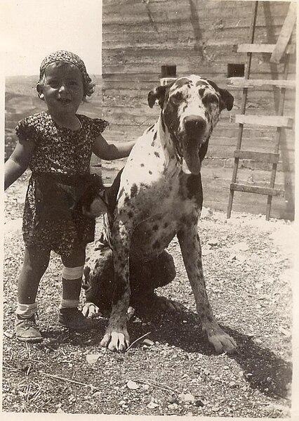 ניצה וחבר - רמת השניים - 1940