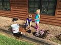 Planting a pollinator garden (21473066223).jpg