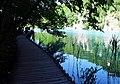 Plitvička jezera 0022.jpg