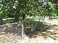 Pocahontas Cemetery (4506548208).jpg