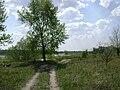 Poland. Gmina Konstancin-Jeziorna. Vistula 034.jpg