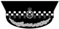 PoliceHeadgear3 - PeakedCap3.png