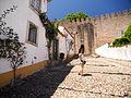 Portugal no mês de Julho de Dois Mil e Catorze P7210315 (14568594598).jpg