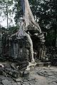 Preah Khan - S Temple (4206396059).jpg