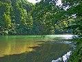 Presups.river.JPG