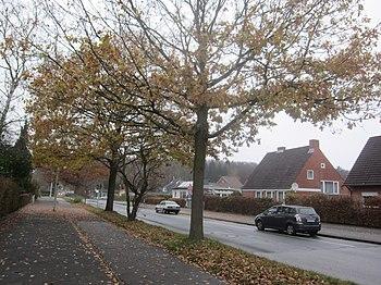 Projensdorfer Straße, 2011