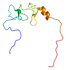 Protein LIMA1 PDB 2d8y.png