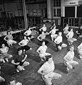 Pts For Lunch- Physical Training in the Canteen of a Southern Small Arms Factory, England, 1943 D12992.jpg