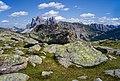 Purons sui ëures de Resciesa te Gherdëina Südtirol.jpg