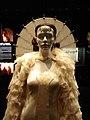 Queen Amidala's Parade Gown (top).jpg