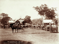 Queensland State Archives 2370 Farmers carts wagonettes sulky and dray at Lowood Cream Company Cheese Factory at Yangan 1899.png