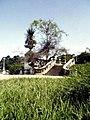 Quinta da Boa Vista, jardim do Museu Nacional.jpg