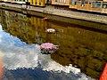 RIU ONYAR (GIRONA-TEMPS DE FLORS 2014) - panoramio.jpg