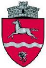 ROU SV Moldova-Sulita CoA.png