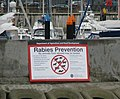 Rabies prevention sign, Bangor - geograph.org.uk - 738725.jpg