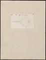 Raja nigra - 1700-1880 - Print - Iconographia Zoologica - Special Collections University of Amsterdam - UBA01 IZ14200059.tif