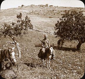 Ramah de la suda (4879821780).jpg