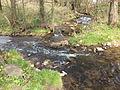 Ramholzer Wasser Mündung.JPG