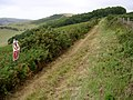 Range walk on West Creech Hill - geograph.org.uk - 221658.jpg