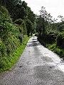 Raycomb Lane - geograph.org.uk - 947538.jpg