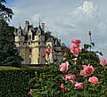 Reminiscence. Château d'Ussé - The Sleeping Beauty Castle. France.jpg