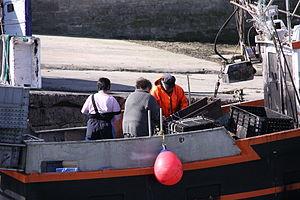 Retour de la pêche à la seiche du fileyeur Jason IV (2).JPG